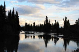 Jenny Lake\'s outlet at sunset, photographed June 5, 2008.