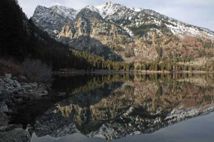 A reflection in Phelps Lake. I took this picture northwest of Huckleberry Point on November 15, 2008.