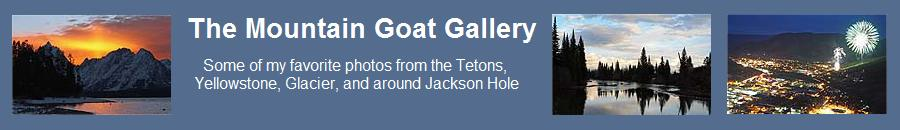 The Mountain Goat Gallery